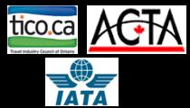 8th International Jerusalem Marathon. ACTA. TICO. IATA