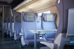 High Speed Sapsan Train, Little Tour of Russia