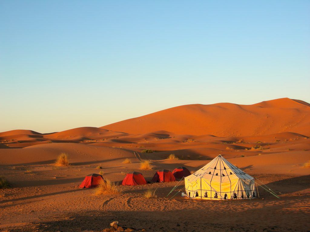 Jewish Heritage Tour to Israel. Tent in the desert.