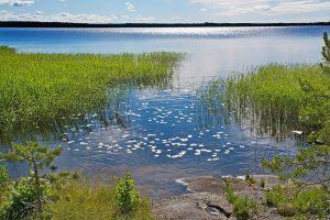 Scandinavia – Northern Wonders, 10 days / 9 nights. Norway forests in Varmland, Sweden, Scandinavia